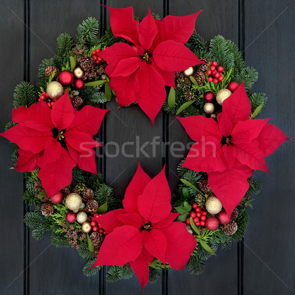 Poinsettia Flower Wreath Stock photo © marilyna