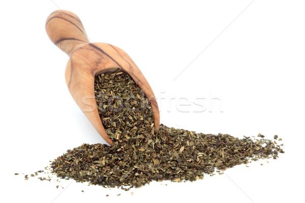 Ginkgo Tea Stock photo © marilyna