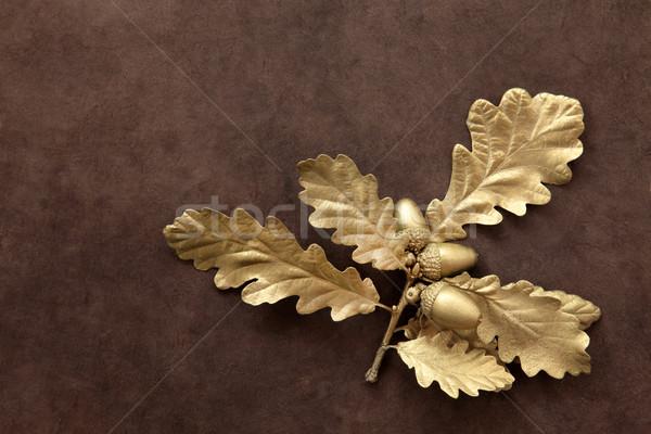 Złoty złota żołądź liści brązowy wykonany ręcznie Zdjęcia stock © marilyna