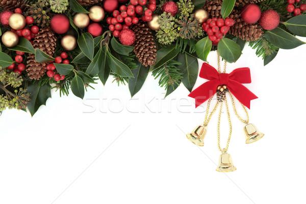 Christmas dekoracji zimą kwiatowy granicy czerwony Zdjęcia stock © marilyna