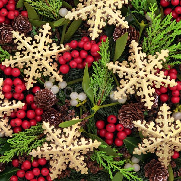 Snowflake Delight Stock photo © marilyna