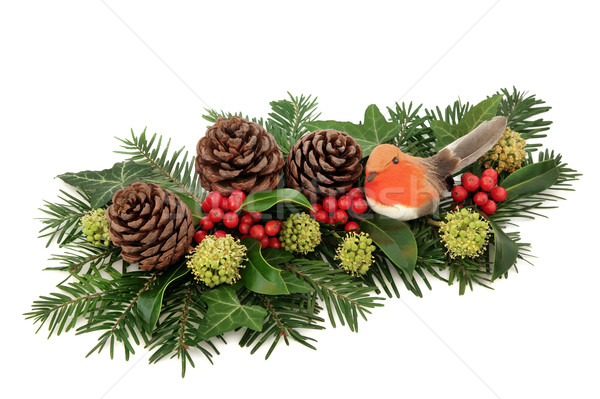 Winter Decoration with Baubles and Robin  Stock photo © marilyna