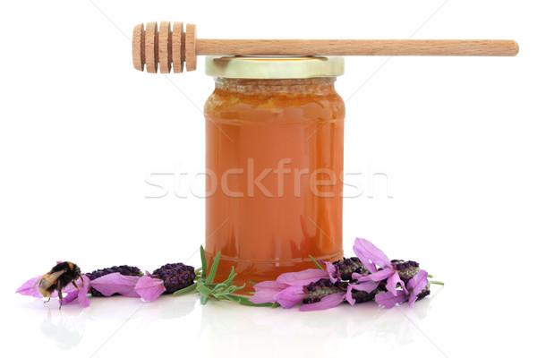 Lavender Honey Stock photo © marilyna