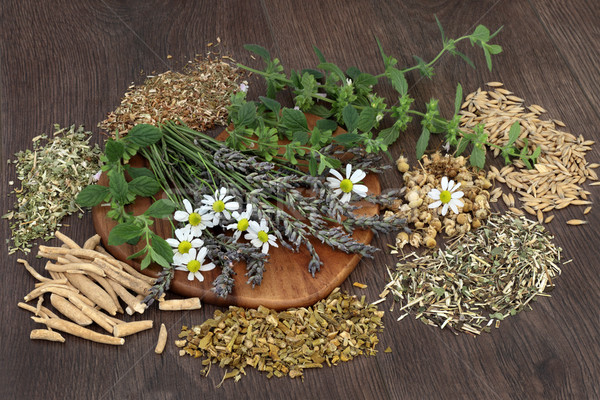 Herbs for Anxiety and Sleeping Disorders Stock photo © marilyna