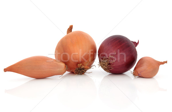Onion Types Stock photo © marilyna