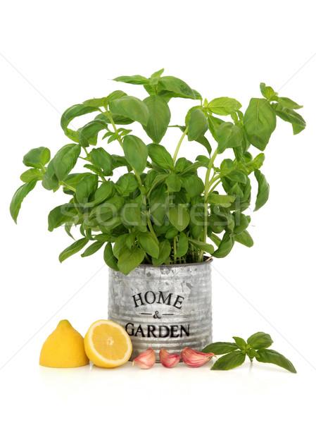 Basil Herb, Garlic and Lemon Stock photo © marilyna