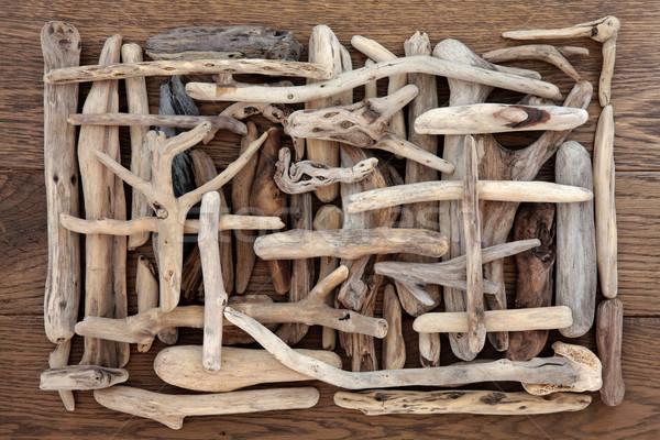 Driftwood piękna streszczenie projektu dąb drewna Zdjęcia stock © marilyna