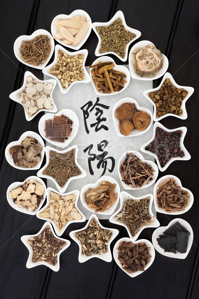 Yin Yang Chinese Herbal Medicine Stock photo © marilyna