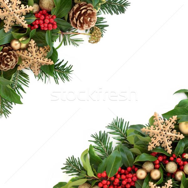 снежинка декоративный Рождества границе золото безделушка Сток-фото © marilyna