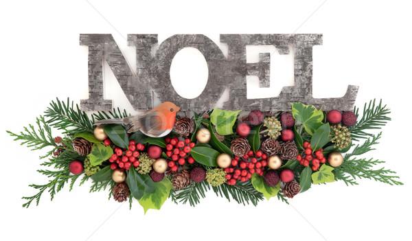 Festive Noel Decoration Stock photo © marilyna