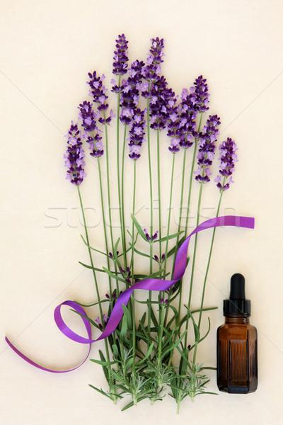 Lavendel Blume Aromatherapie Kraut ätherisches Öl Flasche Stock foto © marilyna