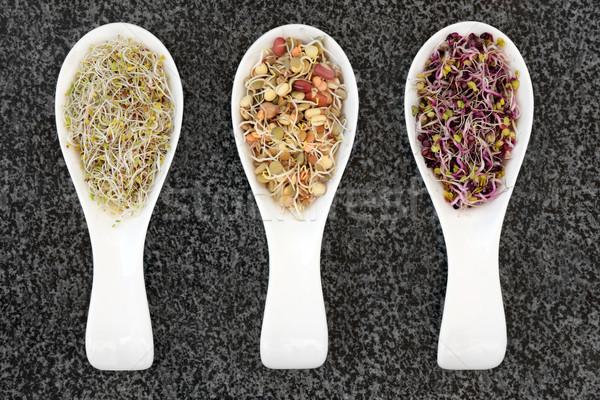 Stock fotó: Egészség · étel · organikus · Kína · rózsa · vegyes