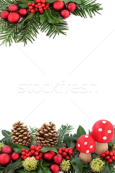Navidad fantasía frontera rojo volar setas Foto stock © marilyna