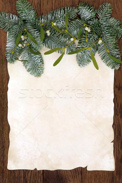 Maretak grens christmas abstract sneeuw Stockfoto © marilyna