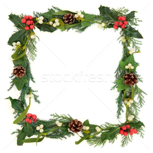 商业照片: 边境 · 圣诞节 · 槲寄生 · 常春藤