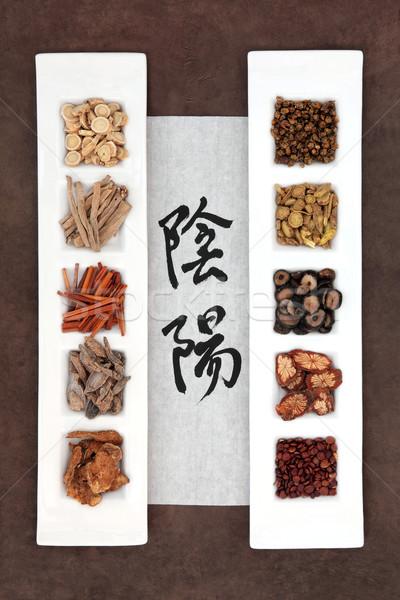 Yin yang gyógynövény kínai kalligráfia kézírás rizs Stock fotó © marilyna