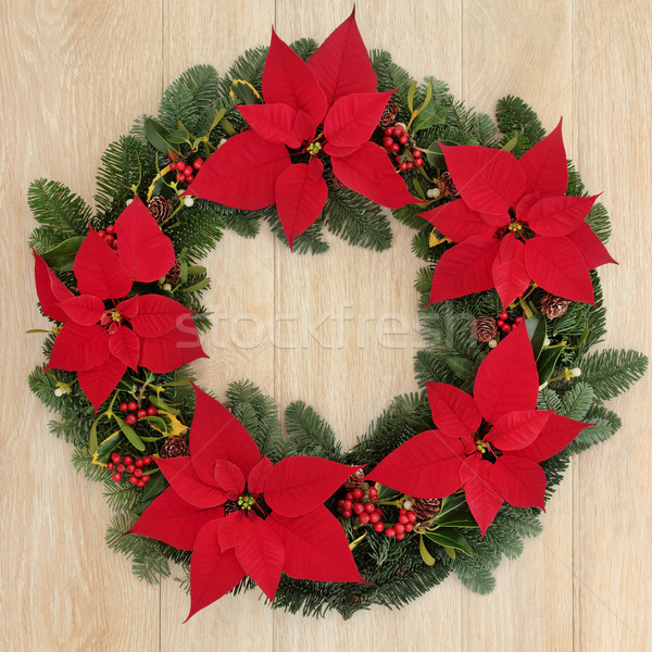 Poinsettia Wreath Stock photo © marilyna