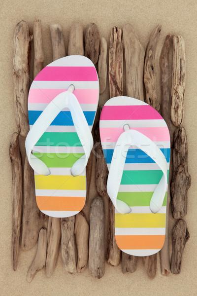 Rainbow Flip Flops Stock photo © marilyna