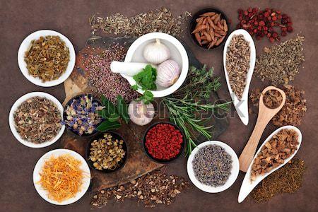 Szárított növénygyűjtemény egészség férfiak gyógynövény fűszer használt Stock fotó © marilyna