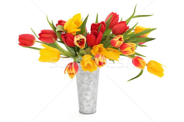 Tulp bloem schoonheid bloemen aluminium vaas Stockfoto © marilyna