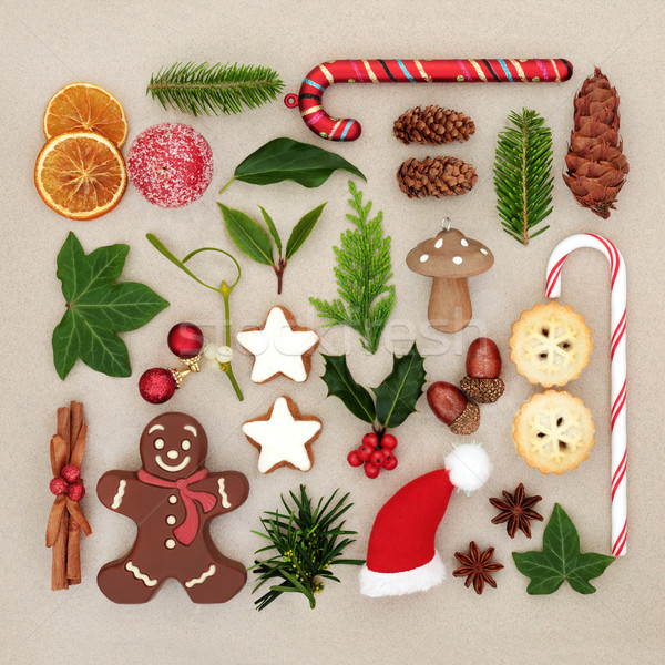 Christmas Symbols Sampler  Stock photo © marilyna