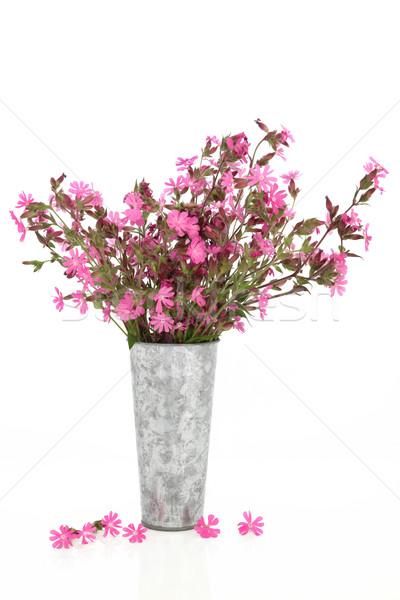 Rood wildflower arrangement oude aluminium Stockfoto © marilyna
