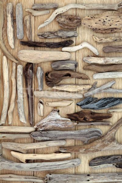 Troncos naturalismo abstrato carvalho madeira natureza Foto stock © marilyna