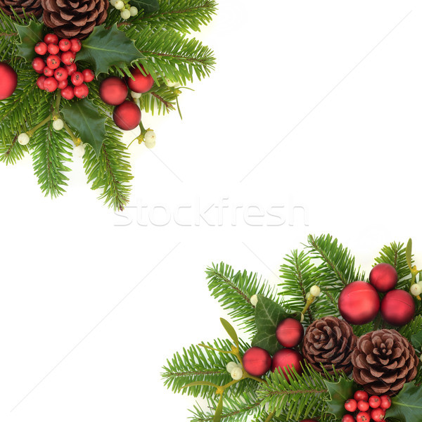 Decorative Christmas Border Stock photo © marilyna