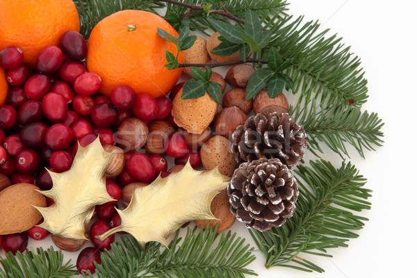 Noel meyve fındık fauna mandalina kızılcık Stok fotoğraf © marilyna