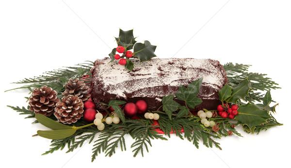 Yule Log Chocolate Cake Stock photo © marilyna