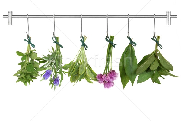 Drying Herb Bunches   Stock photo © marilyna