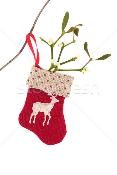 Natale simboli rosso stocking vischio foglia Foto d'archivio © marilyna