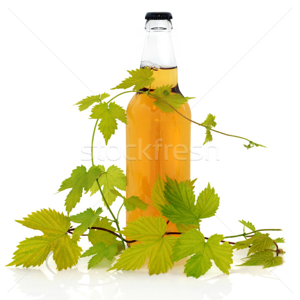 Beer Bottle and Hop Leaves Stock photo © marilyna