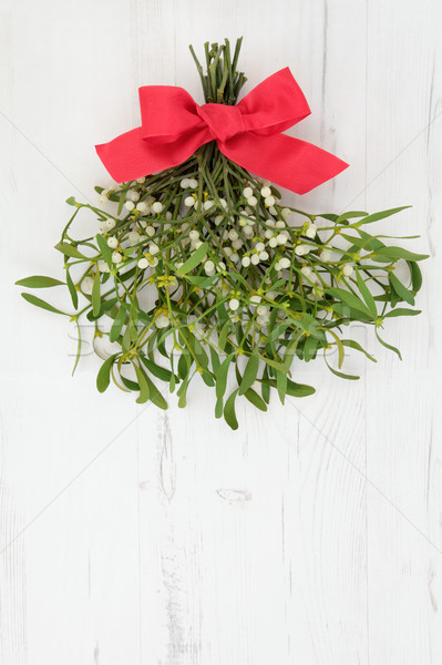 Mistletoe with Red Bow Stock photo © marilyna