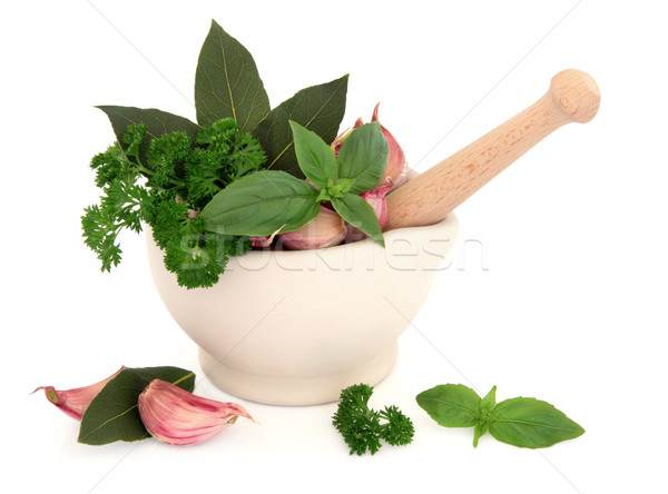 Fokhagyma gyógynövények szegfűszeg petrezselyem bazsalikom babérlevél Stock fotó © marilyna