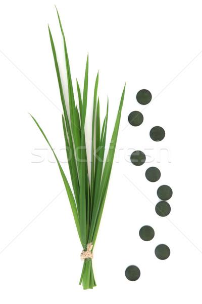 Chlorella Tablets and Wheatgrass Stock photo © marilyna