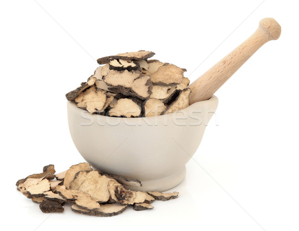 Cogumelo fungo erva usado chinês Foto stock © marilyna