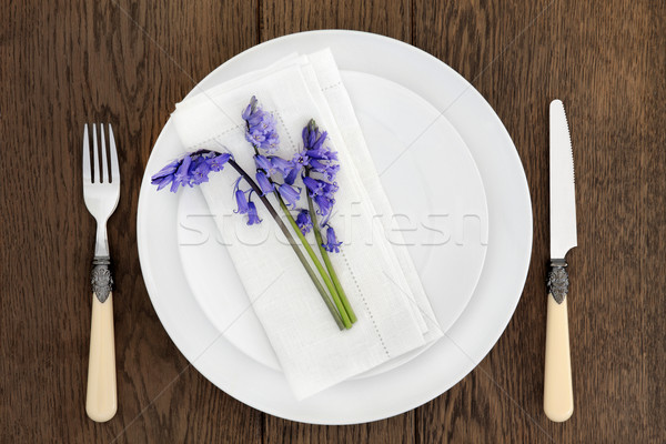 Rustic Place Setting Stock photo © marilyna