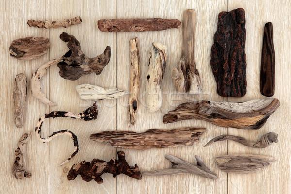 Driftwood streszczenie projektu starych dąb drewna Zdjęcia stock © marilyna
