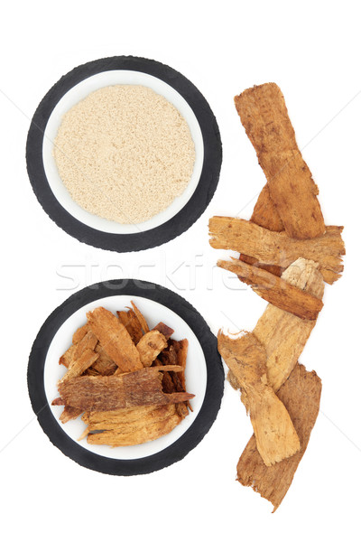 Astragalus Herb Stock photo © marilyna