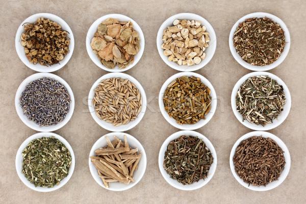 Herbs for Sleeping Stock photo © marilyna