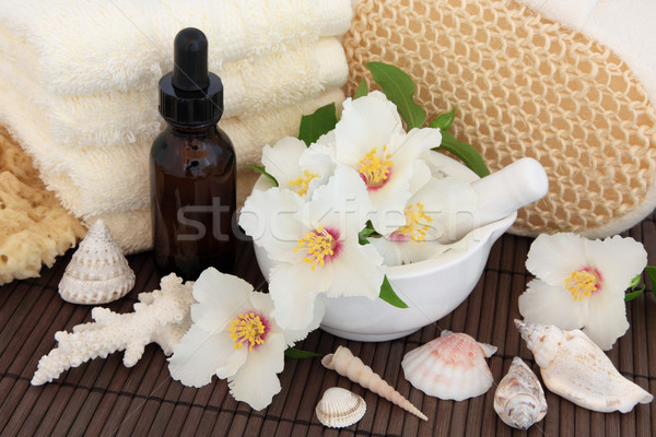 Spa Still Life Stock photo © marilyna
