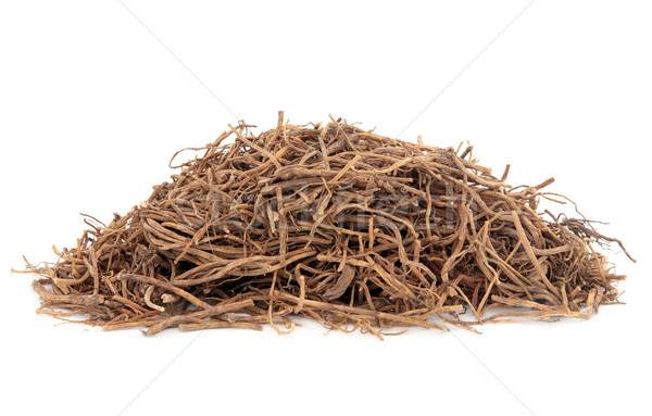 Chinese Gentian Root Stock photo © marilyna