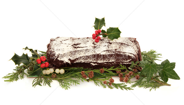 Yule Log Christmas Cake Stock photo © marilyna