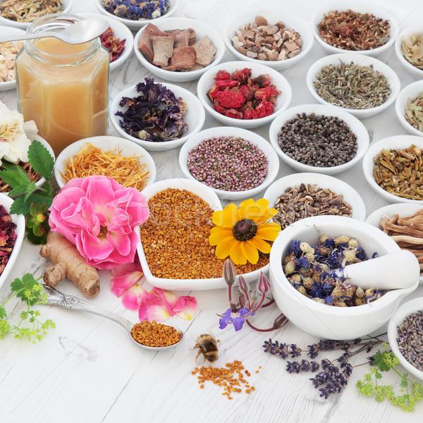 Természetes egészségügy virág gyógynövény használt gyógynövény Stock fotó © marilyna