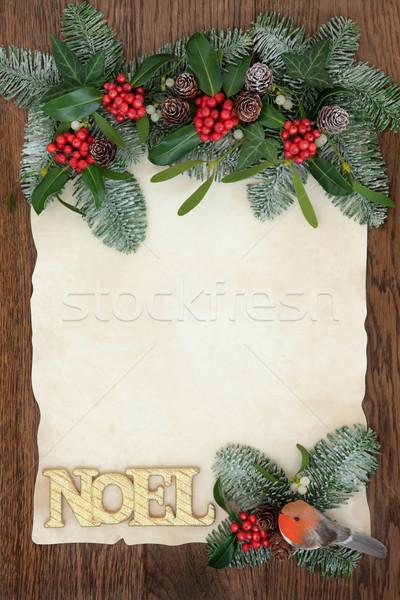 Decorative Floral Noel Border Stock photo © marilyna