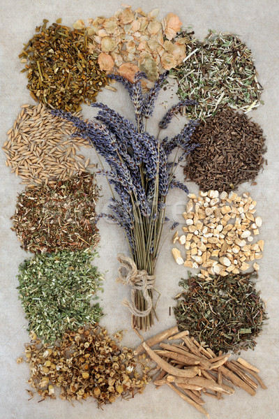 Herbs to Help Sleeping Disorders Stock photo © marilyna
