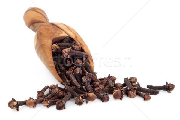 Cloves Stock photo © marilyna
