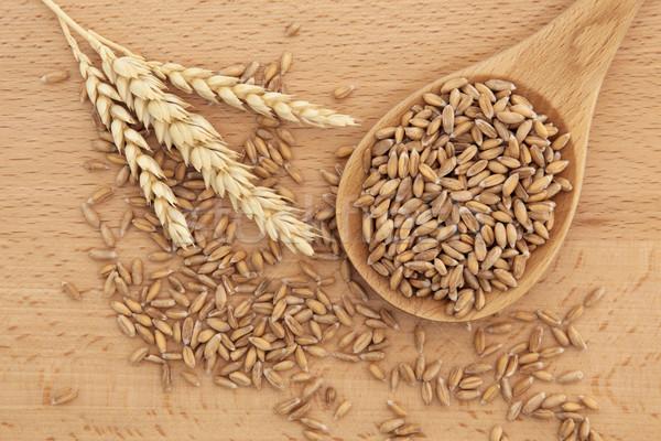Wheat Stock photo © marilyna