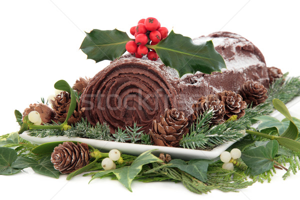 Yule Log Stock photo © marilyna